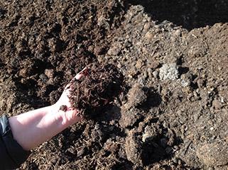 Mushroom Compost Macedon Nursery And Garden Supplies