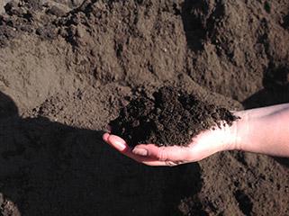 Soils Macedon Nursery And Garden Supplies